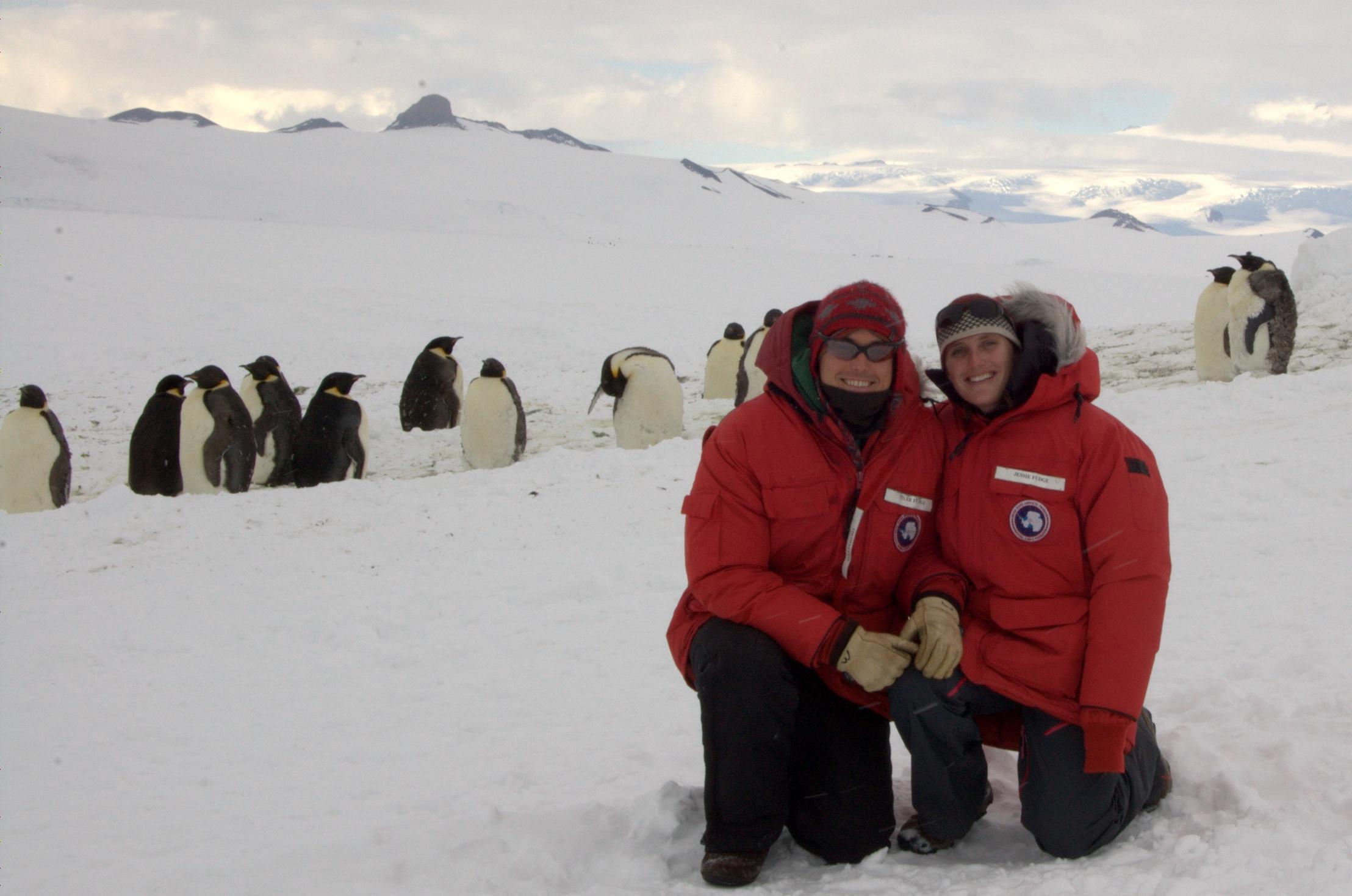 Emperor penguins adventures in antarctica for Can anyone visit antarctica